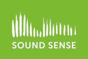 Sound Sense :: the UK professional association for community